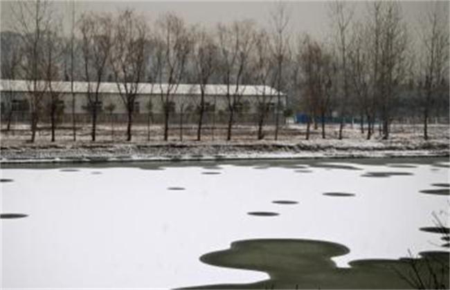 冬季水产养殖注意事项