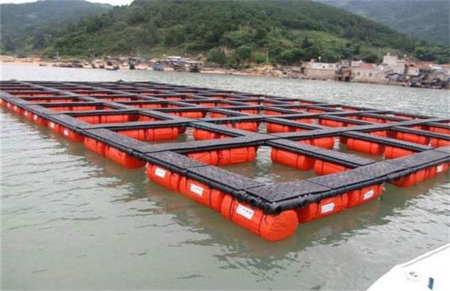 网箱养鱼 常见方式