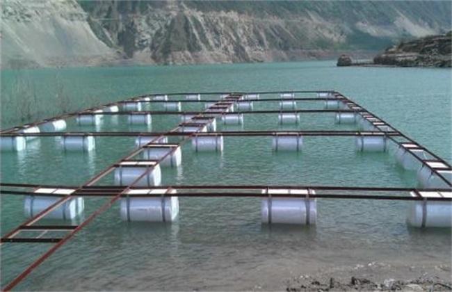 水库网箱养鱼技术