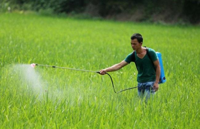 农药二次稀释的好处与方法