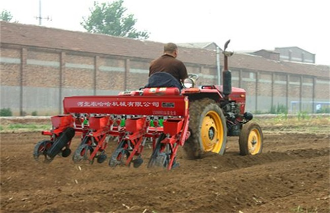 影响玉米 播种时间 因素