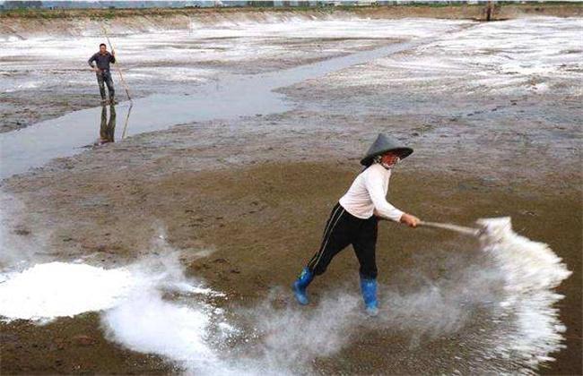 小龙虾池塘常见的消毒方法