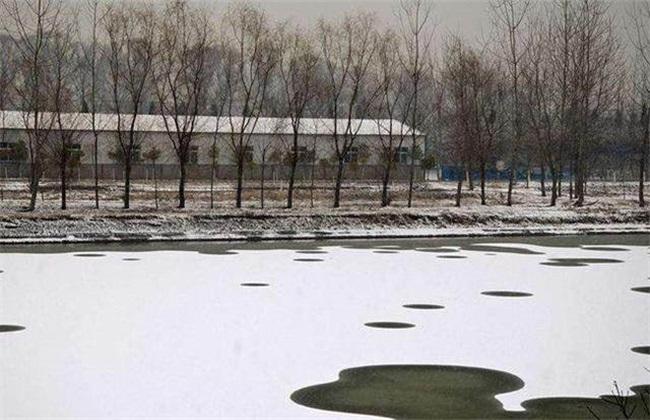 冬季鱼塘 如何增氧