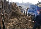 冬季堆肥操作要点
