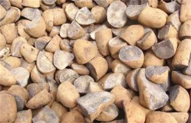 土豆 种植技术