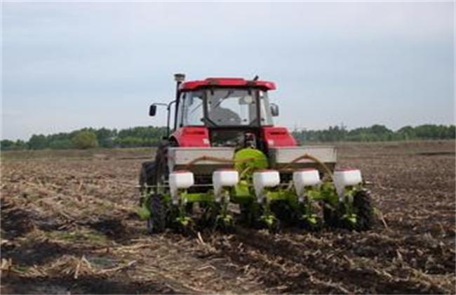 玉米免耕播种有什么优点