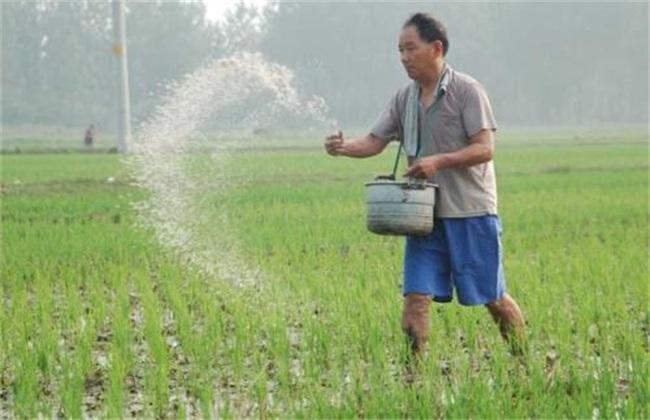 化肥利用率低的原因