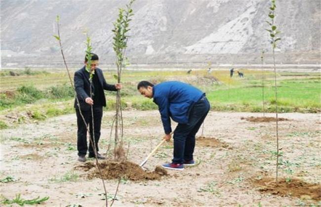 果树不同季节的栽培要点