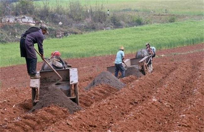 农家肥 使用方法 有哪些