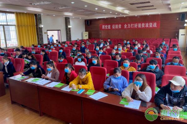 新邵县举办电商培训 助推青年创业