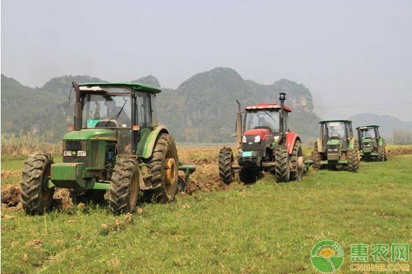 2020年农村土地确权进行收尾,哪些农民会失去土地权益?