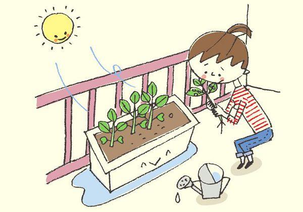 阳台蔬菜病虫害怎么预防?