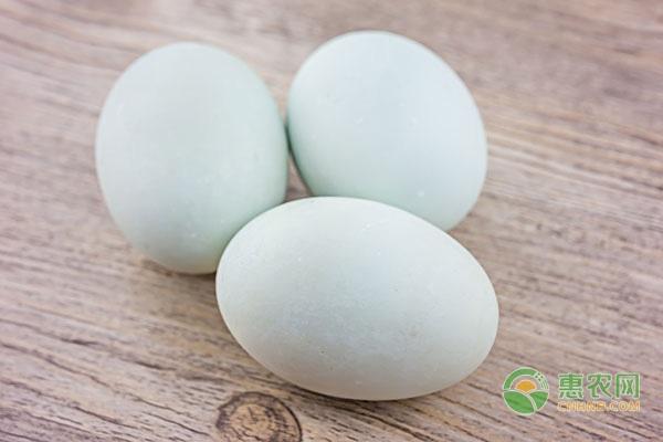 鸭蛋有哪些优质产区?附今日鸭蛋价格行情走势分析