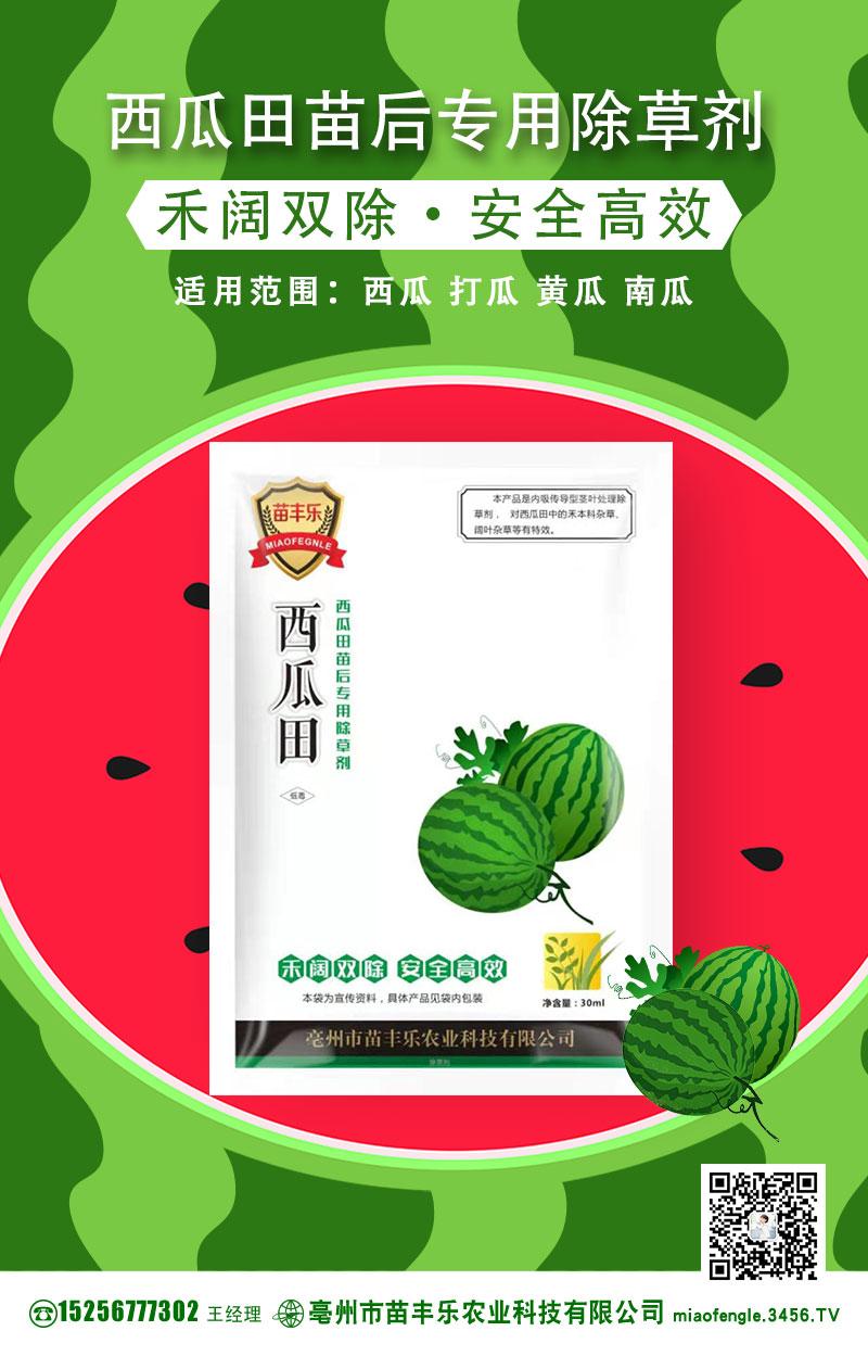 西瓜种植时间 种植技术 种植方法