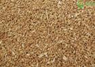 今年小麦价格是多少钱一斤?附最新行情走势分析