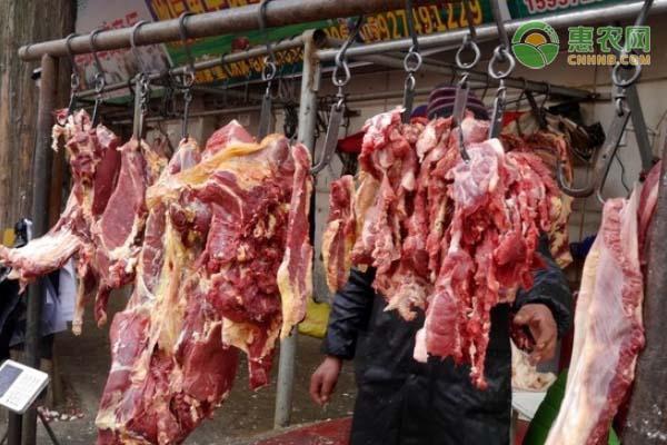 羊肉涨价近30%,后期价格走势如何?